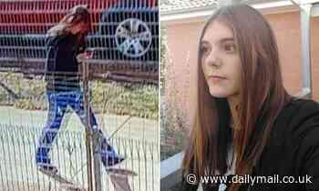 Search for missing 12-year-old girl in Mount Austin, Wagga Wagga, NSW