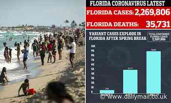 Florida becomes Covid variant capital of the US with 11,800 cases after Spring Breakers flood state