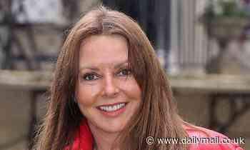Maths wiz Carol Vorderman is a fine addition to the Great British Spring Clean