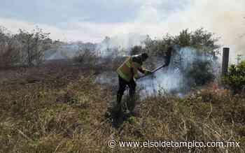 Autoridades analizan multar a quienes provoquen incendios en Pueblo Viejo - El Sol de Tampico