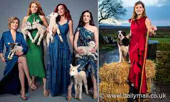 Women CAN be top of the flocks!Britain's gone baarmy for shepherdesses