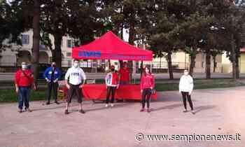AVIS Rho al parco Europa di Rho per festeggiare le mamme donatrici - Sempione News