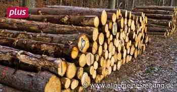 Waldbesitzer im Kreis Bad Kreuznach kritisieren Holzpreise - Allgemeine Zeitung
