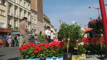 Villeneuve-sur-Lot. Le marché aux fleurs, c'est dimanche qu'il se déroule - LaDepeche.fr