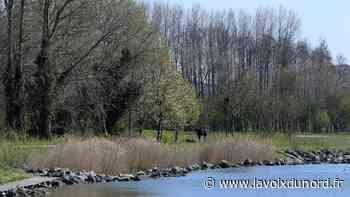 Grande-Synthe : le Puythouck, réaménagé, peut à nouveau accueillir promeneurs et pêcheurs - La Voix du Nord