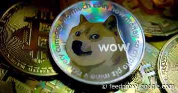 Dogecoin suffers huge price drop during Elon Musk's SNL appearance     - CNET