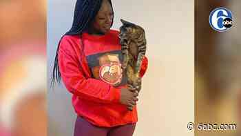 The Black Thornberry: How one local woman aims to rescue stray animals in Philadelphia and beyond - WPVI-TV