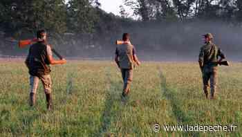Les chasseurs de Montauban et d'Albias se disputent le quartier de Fonneuve - LaDepeche.fr