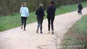 Montauban : Un exhibitionniste surprend des joggeuses au bord du canal - LaDepeche.fr
