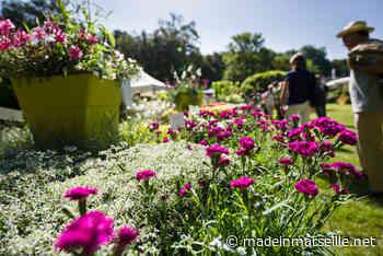À Bouc-Bel-Air, les Journées des plantes d'Albertas reviennent pour leur 28e édition - Made in Marseille