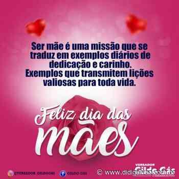 Mensagem do vereador Gildo Gás, presidente da câmara municipal de Santa Maria da Boa Vista - Blog do Didi Galvão