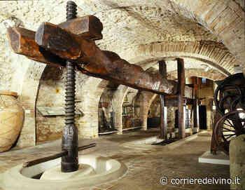 Il Museo del Vino di Torgiano riapre i battenti - Corriere del Vino - Corriere del Vino