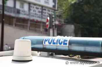 Lognes : quatre cambrioleurs pris en flagrant délit dans la zone industrielle Pariest - Le Parisien