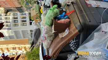 """Degrado urbano a Roma in Via Arezzo, 23: """"degrado cronico senza fine"""""""