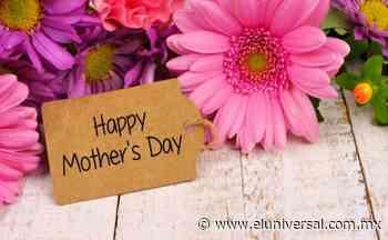 Día de las Madres 2021: Qué significa cada color de rosas | El Universal - El Universal