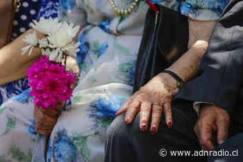 """Fundación Las Rosas busca conseguir 2.000 nuevos socios: """"No está visibilizada la importancia de la gente mayor en las familias"""" - ADN Chile"""