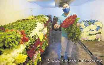 Productores prevén un repunte en la venta de rosas - El Sol de Cuautla