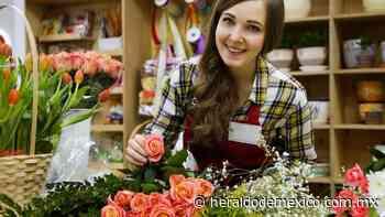 ¿Quieres regalar flores? Te decimos qué significa cada COLOR en las ROSAS - El Heraldo de México