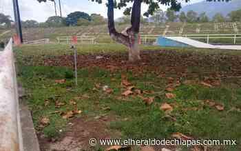 Piden intervención de autoridades en el barrio Guadalupe de Huixtla - El Heraldo de Chiapas