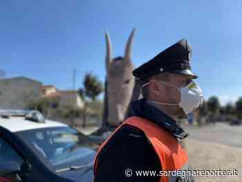 Operazioni Carabinieri di Nuoro - Sardegna Reporter