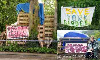 Council threatens legal action to stop XR-backed protesters who set up camp to 'save trees'