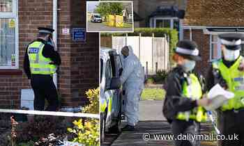Man is arrested for murder after woman in her 70s is found dead in semi-detached bungalow