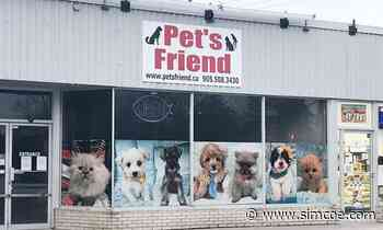 Council Pet shop regulations and other things that happened at New Tecumseth council Alliston Herald 0 - simcoe.com