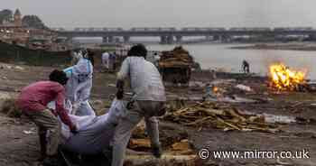 Horror as more than 100 bodies of 'Covid patients' wash up on banks of Ganges