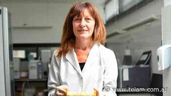 Advierten que el autotest de coronavirus puede dar falso negativo - Télam