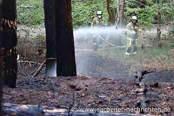 Landwirt hilft Feuerwehr: Waldbrand in Alsdorf vom starken Wind angefacht - Aachener Nachrichten