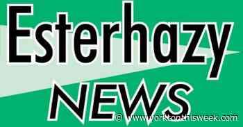Esterhazy business licences - Yorkton This Week