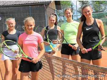 Tennis: Drei Nachwuchsteams aus dem Kreis Höxter schlagen in der Bezirksklasse auf: Mehr Aktive im Jugendbereich - Höxter - Westfalen-Blatt