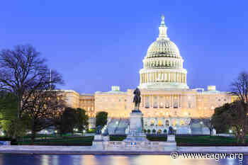 Congress Displays High Level of Support for Earmarks - The WasteWatcher