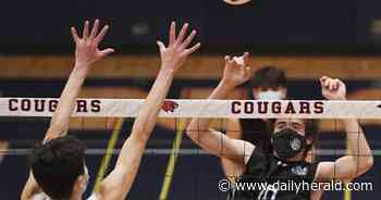 Boys volleyball: Lake Zurich learns to finish, beats Conant