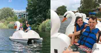 You Can Float Along The Lachine Canal On A Swan-Shaped Pedal Boat This Summer - MTL Blog