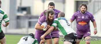 Rugby Nationale : Les Violets s'imposent avec le bonus offensif à Suresnes - La Voix de l'Ain
