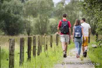 Fotozoektocht brengt wandelaars naar bijzondere plekjes in g... (Tielt-Winge) - Het Nieuwsblad