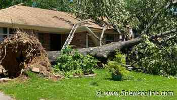 Many Alma residents assessing damages after trees fall on homes - 5newsonline.com