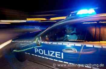 Zeugenaufruf in Leinfelden-Echterdingen: Navigationsgerät und Lenkradteile gestohlen - esslinger-zeitung.de