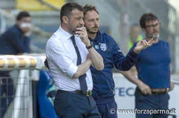 """Tmw: """"Nelle intenzioni di Ribalta non c'è D'Aversa"""" - Forza Parma"""
