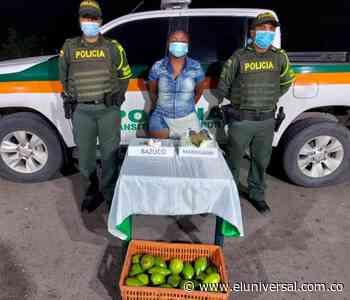 Mujer cae con 'narcoaguacates' en la vía a San Onofre-Cartagena - El Universal - Colombia