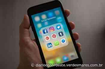 Breves recomendações para um programa de desintoxicação digital - Diário do Nordeste