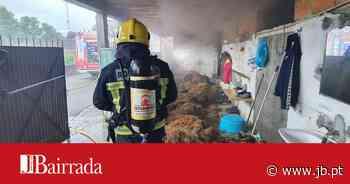 Bombeiros de Oliveira do Bairro travam incêndio em arrecadação de palha - Jornal da Bairrada