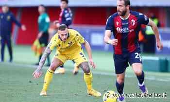 """Serie A, il Chievo potrebbe """"spostare"""" Verona-Bologna - Calcio Hellas"""
