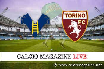 Pagelle Hellas Verona - Torino 1-1, highlights e voti fantacalcio - Calciomagazine