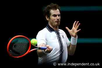 Andy Murray to practice with Novak Djokovic in latest injury comeback with French Open in sight - The Independent