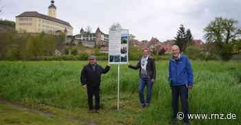 Gundelsheim: Von versunkenen Ketten und Kanonenschüssen - Mosbach - Rhein-Neckar Zeitung