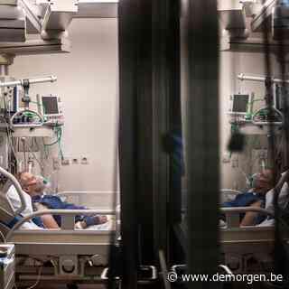 Wetenschappers kraken coronamysterie: waarom de ene patiënt zieker wordt dan de andere