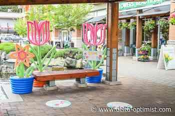 Blooms campaign adds vibrancy to Tsawwassen shopping core - Delta-Optimist