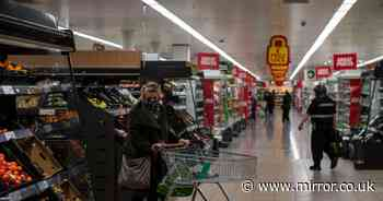 Supermarket loyalty schemes compared including Morrisons, Tesco and Sainsbury's